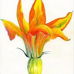 orangefloweropen.jpg