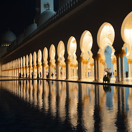 Sheikh Zayed Mosque by Hardik Vasavada - Buildings & Architecture Statues & Monuments (  )