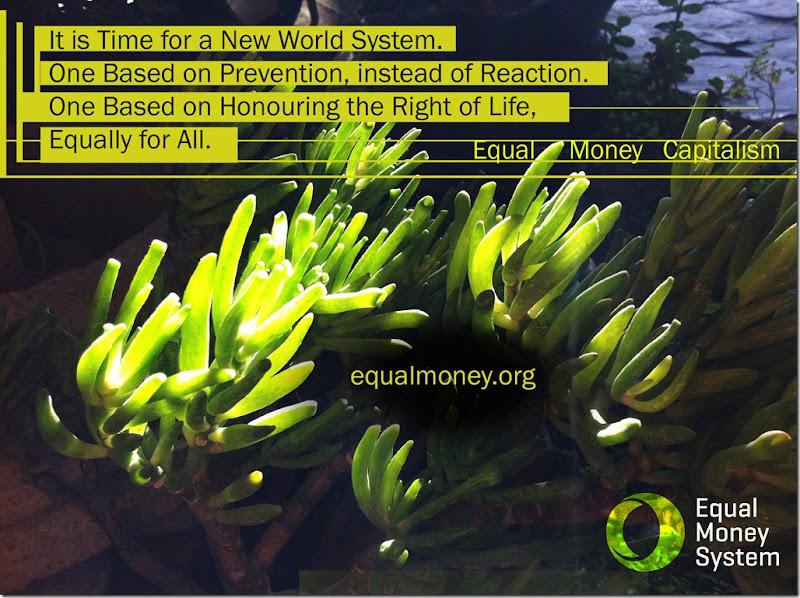 Equal Money Capitalism 1