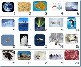 Calendar Connections Small Arctic and Antarctica2