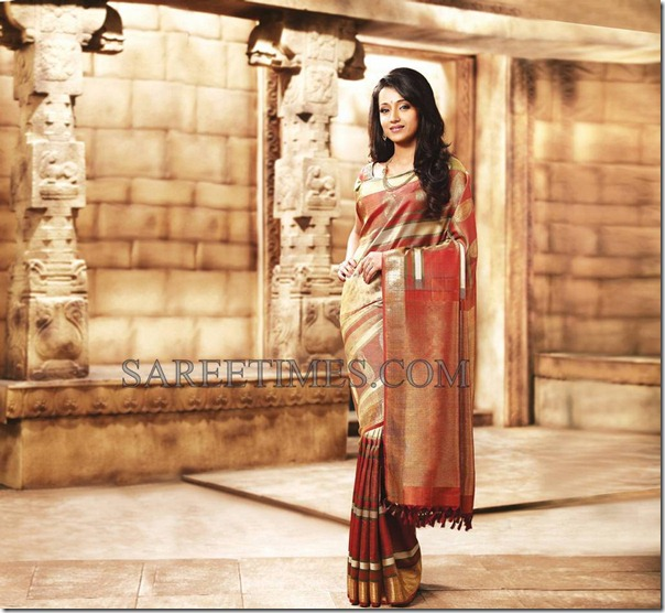 Trisha_Traditional_Saree (2)