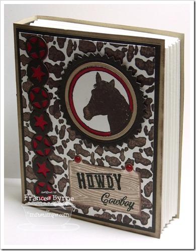 C4C161 CowboyBook3 wm
