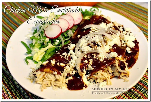 mexican chicken mole enchilada recipe