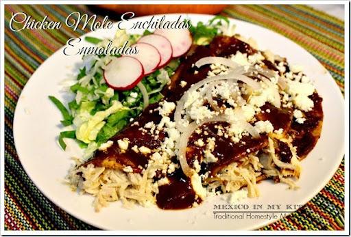 mexican chicken mole enchilada recipe