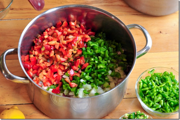 salsa (17 of 63)