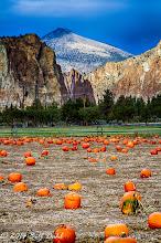 Autumn 10-27 - 58