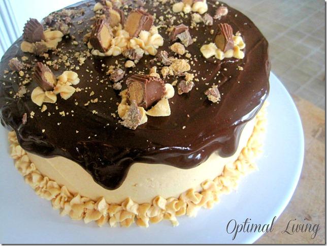 Peanut Butter Cake 67