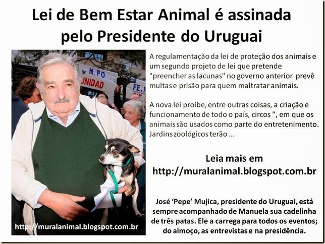 Lei de Bem Estar Animal é assinada