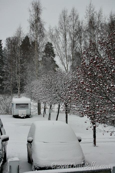 winter2011-6