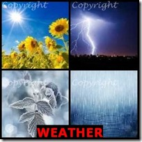 WEATHER- 4 Pics 1 Word Answers 3 Letters