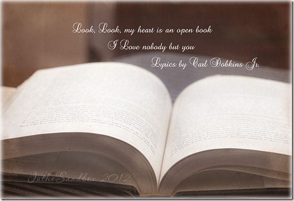 open book with kk textures