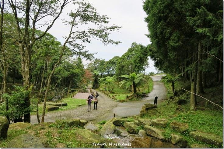 三峽熊空茶園 (40)