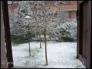 Neve a Padulle - 28 gennaio 2014(9)