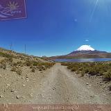 Arica - Parque Nacional Lauca  (22 de 48).jpg