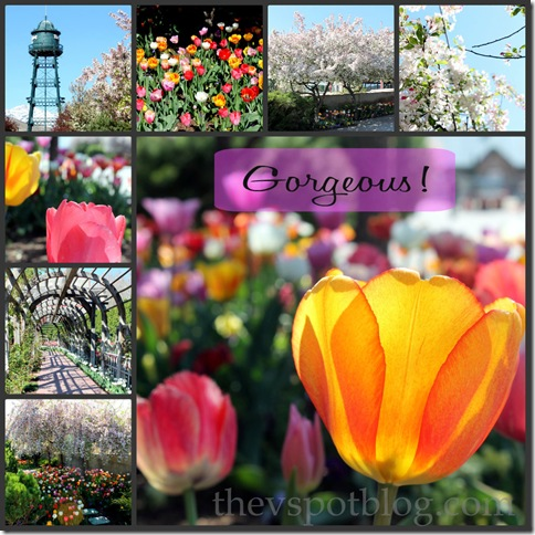 tulips, thanksgiving point,festival, watertower, SNAP, Lehi, Utah, arbor, flowers