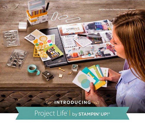 project life img