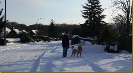 snow again9