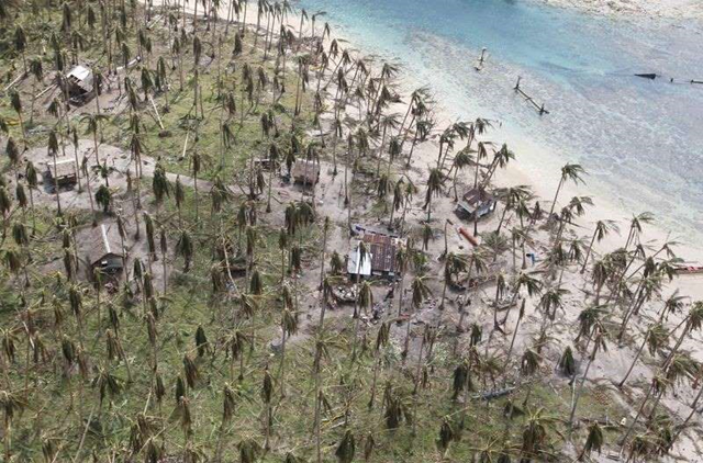 Aerial view of damaged coconut trees at a remote village in Dolores, Eastern Samar, central Philippines, after Typhoon Hagupit made landfall, 9 December 2014. Photo: Erik De Castro / REUTERS