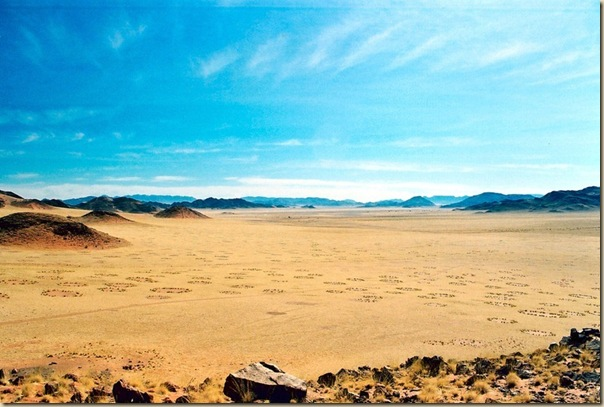 Mystérieux cercles de fées en Namibie (3)