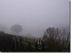 In a Fog...