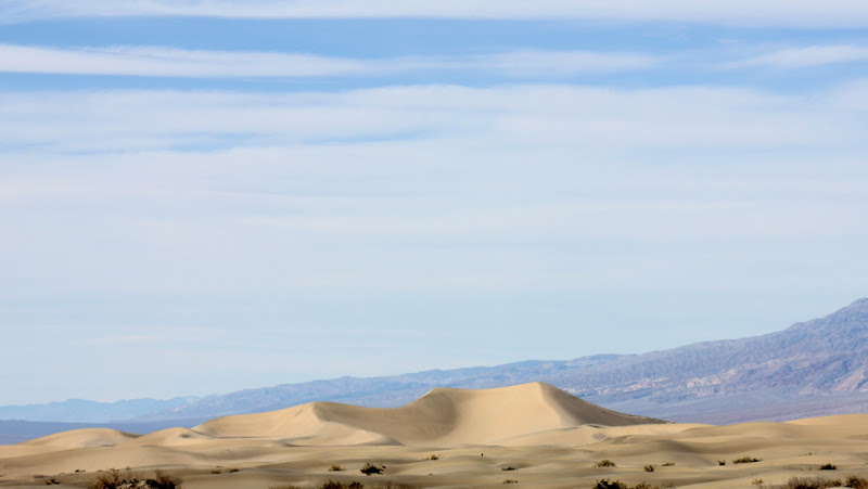 Golden Dunes on the Horizon