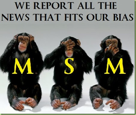 msm Monkey See Hear Speak No obama Evil