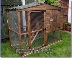 kandang ayam di kebun 010