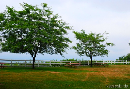8. picnic tables-kab