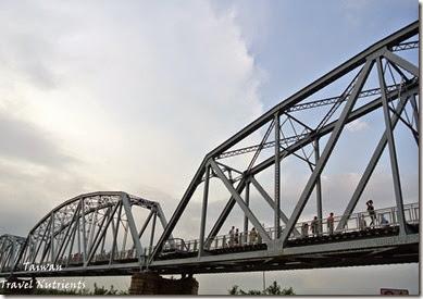 大樹舊鐵橋天空步道 (60)