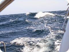 005 2-3mt Seas