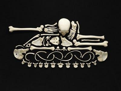 Francois-Robert-Bones-art-2