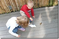 2011-11-04 Butterfly Pavilion (17)