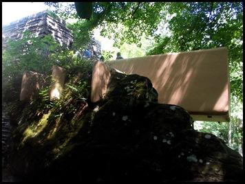 Fallingwater & Ferncliff walk 092