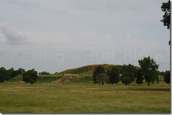 Cahokia Mounds 4