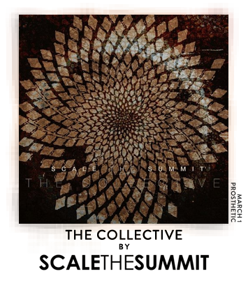 The Collective by Scale the Summit