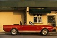 Ford-Mustangs-20