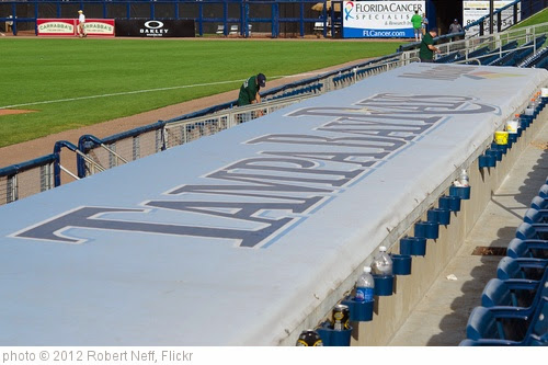 'Top of Rays Dugout - Spring Training.' photo (c) 2012, Robert Neff - license: http://creativecommons.org/licenses/by/2.0/