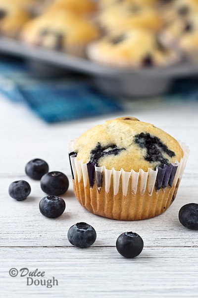 Blueberry-Cream-Muffins-1