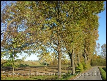 OrtoLà - 26 novembre 2013 (25)