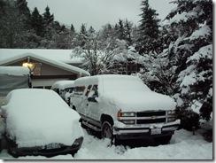 snowpocalypse  13