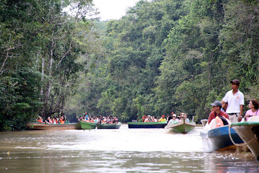 Lots and lots of tourists visit the Kinabatangan
