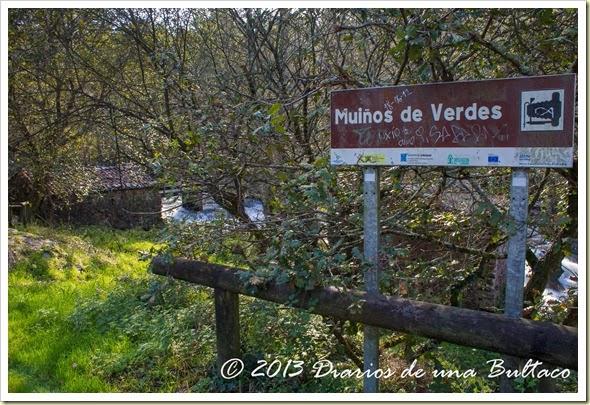 Refugio_Verdes-99