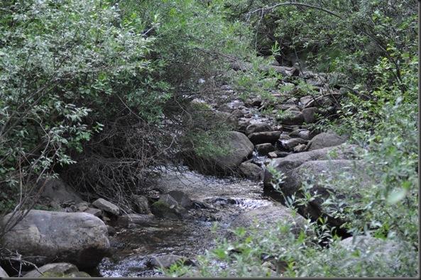 06-09-12 Lake Isabel CO 10
