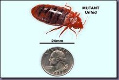 Mutant Cimex Lectarius
