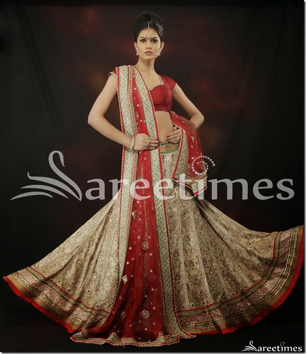 Chhabra_Bridal_Collection(7)