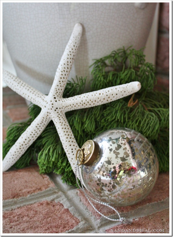 Starfish & ornament