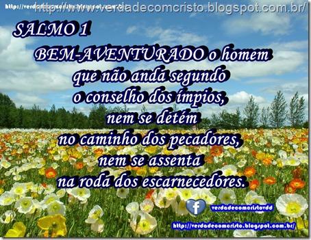 SALMO 01