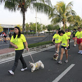 Pet Express Doggie Run 2012 Philippines. Jpg (98).JPG