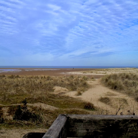 the view from our picnic bench at Holkham