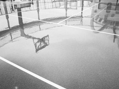 The-Wet-Court